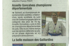 ARTICLE_SALLANCHES